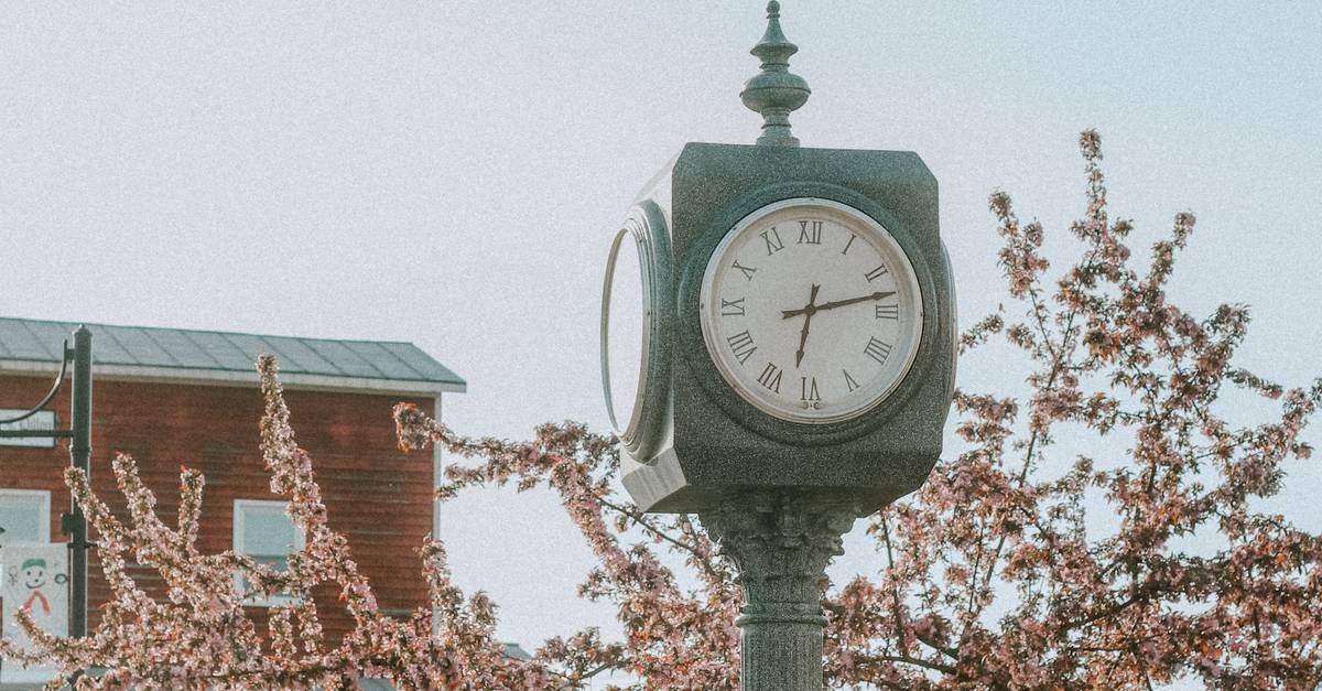 A clock that is on a pole
